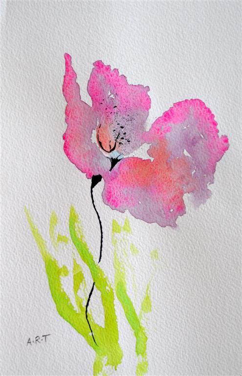 poppy-large