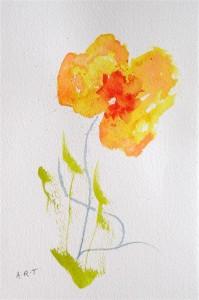 "Poppy1 Watercolour, 10"" x 8"""